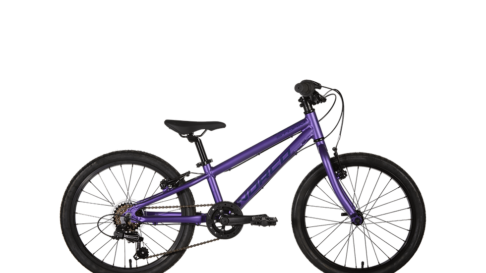 Norco Storm 2.3 20in Kids Bike