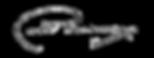 assinatura santanita.png