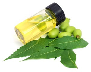 WHAT ARE THE BENEFITS OF ORGANIC NEEM OIL