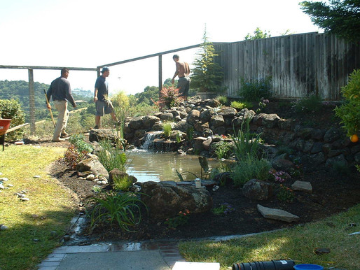 Watergarden Maintenance