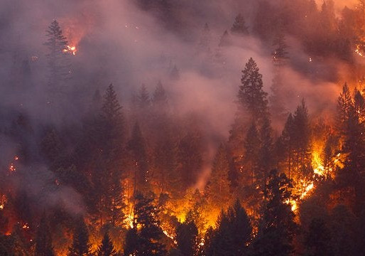 California Wildfires and Precautions Those in Proximity Can Take