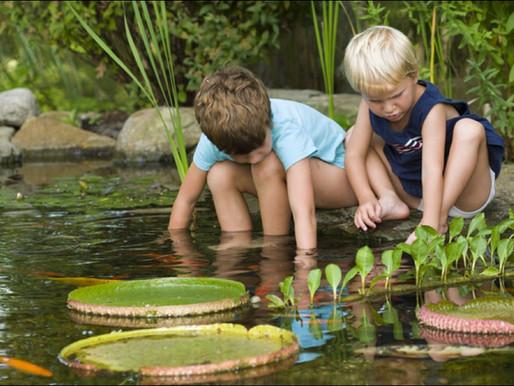Ponds 4 Kids!