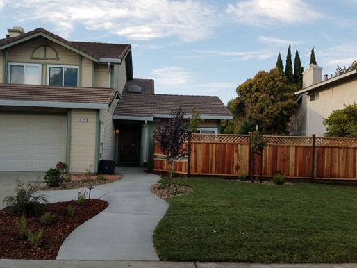 The Difference Between a Gardener and a Landscape Contractor