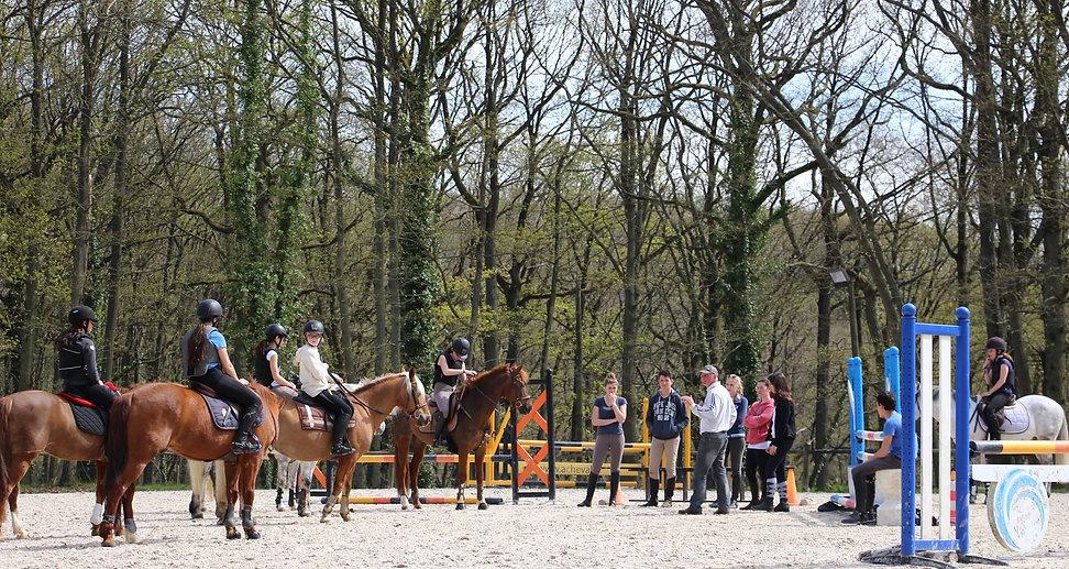 Pension pour propriétaires, cours d'équitation, poney club, compétition, formation de moniteurs. Venez partager notre passion de l'équitation et du cheval !