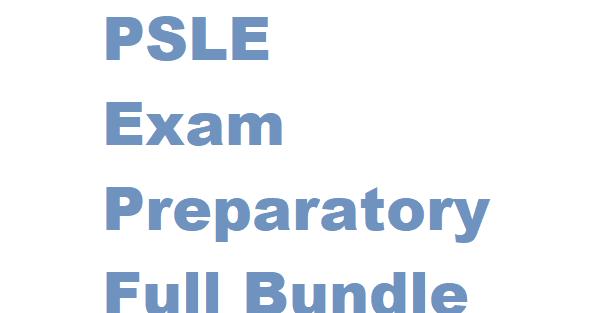 Primary 6 PSLE Exam Preparatory Full Bundle Purchase 