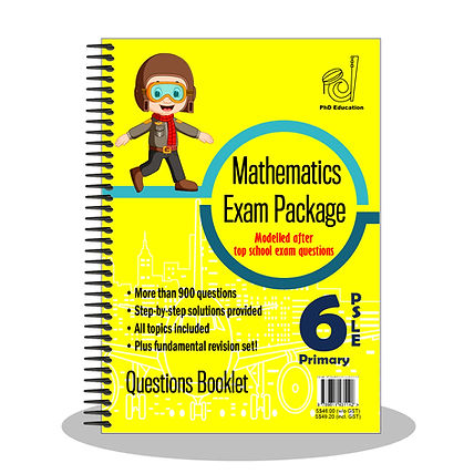 Primary 6 PSLE Maths Questions