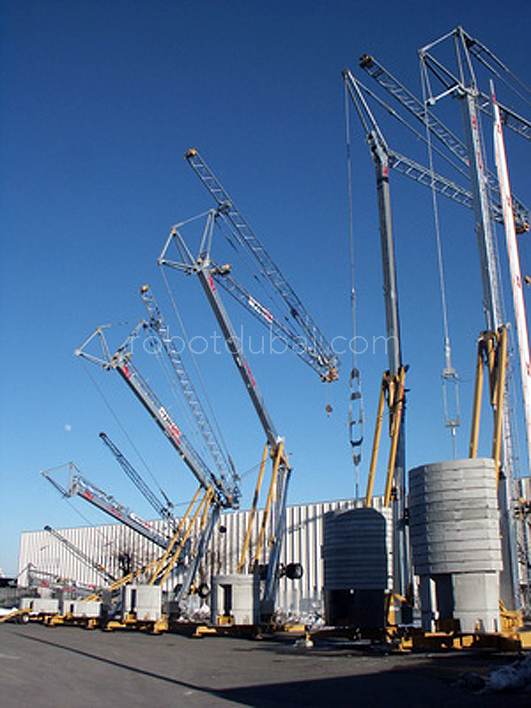 Self Erecting Crane