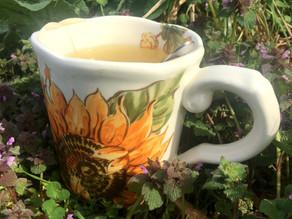 Health & Beauty Boost Herbal Tea Recipe