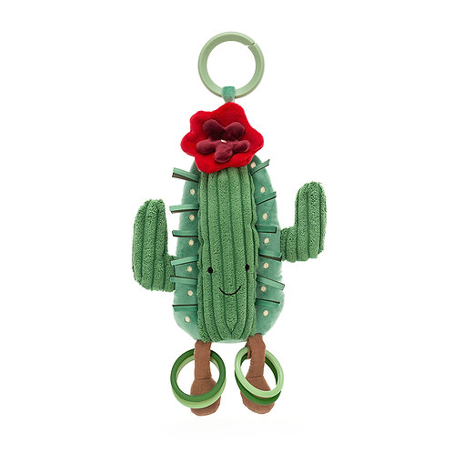 Amuseable Cactus Activity Toy.