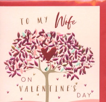 To my Wife on Valentines day.
