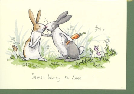 Some Bunny to love.