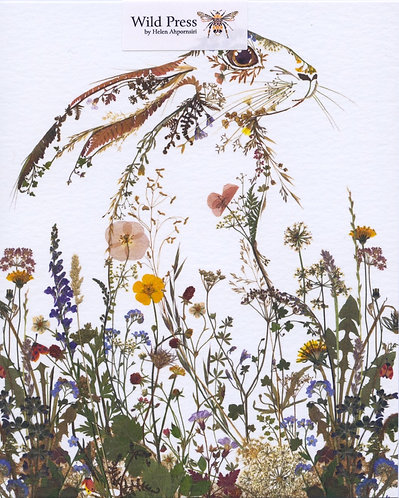 Wildflower Hare.