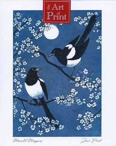 Moonlit Magpies.