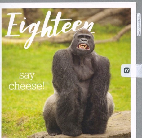 18 say cheese