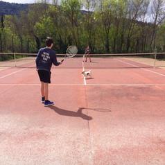 Ball Dog ...