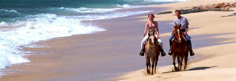 horseback_large.jpg
