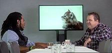 Adobe - Kittens.jpg