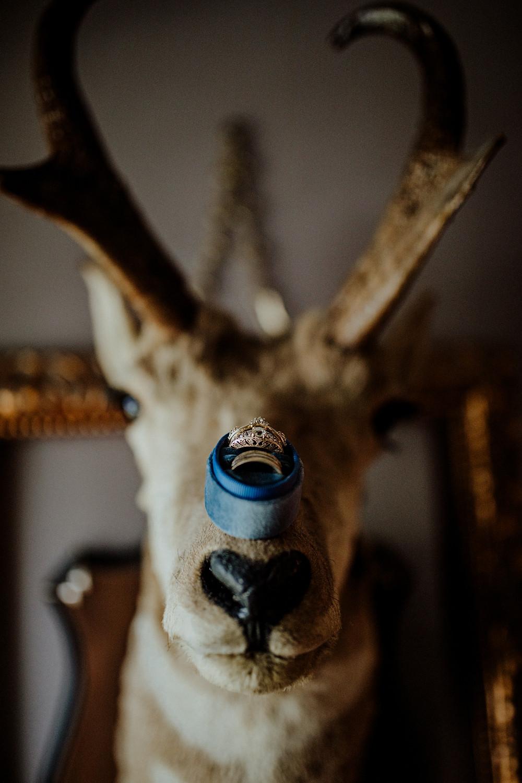 custom wedding ring photo taken by little blue bird photography in jackson, michigan.
