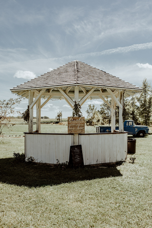 outdoor wedding photo ideas in michigan