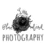 wedding photographers, wedding photographer, wedding photography, photographers for wedding, jackson photographers, creative wedding photographers, stylish wedding photographers, alternative photographers, michigan wedding photographers