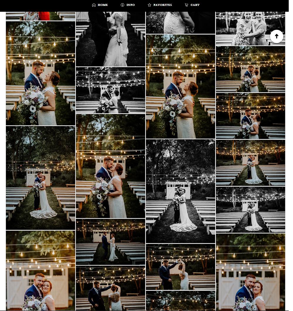 Wedding photos taken at Michigan wedding venue, the Blue Dress Barn in Benton Harbor, Michigan taken by Detroit wedding photographer Little Blue Bird Photography