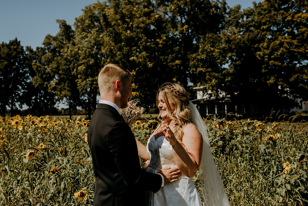 affordable wedding photographer michigan