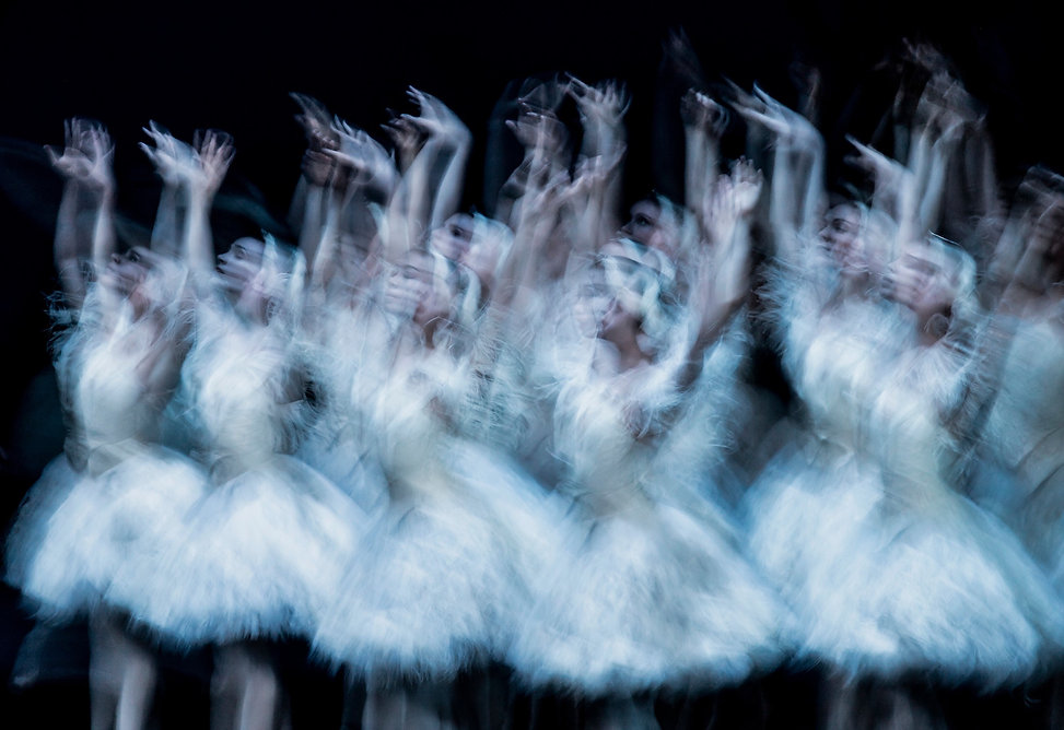 Ballerinas dancing Swan Lake