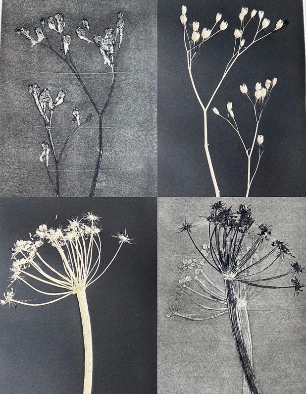 plant print.jpg