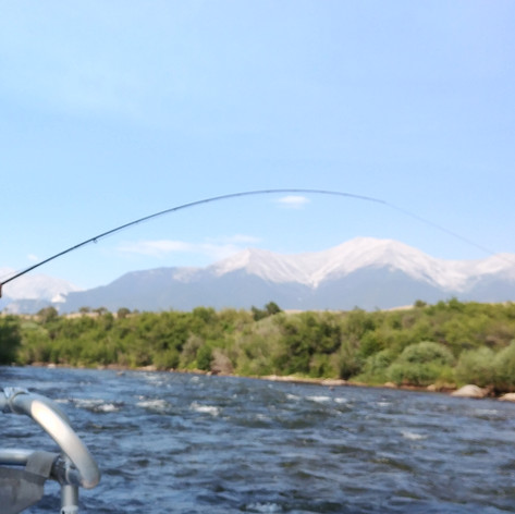 Arkansas River Float Fishing Salida Fly LLC