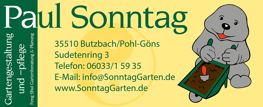 paul_sonntag werbung open_air_kino.png
