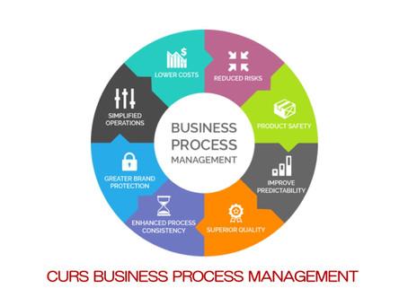 Curs Business Process Management