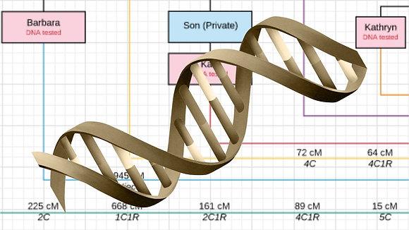 DNA Test Management - Initial Setup