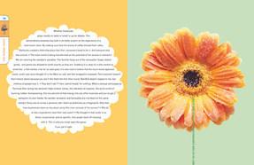 Lovemarks: The Future Beyonds Brands: Saatchi & Saatchi Designers' Edition