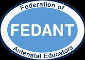 fedant-new-logo (1).png