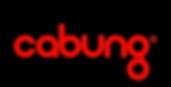 Cabung Logo without tagline (2).png