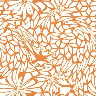 weiß & orange.png