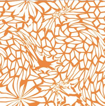 white&orange.png