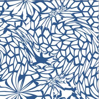 weiß & blau.png