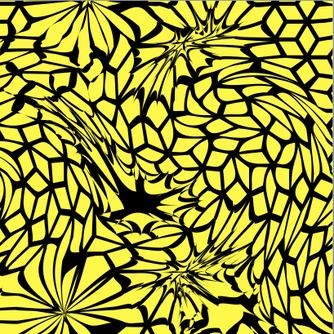 schwarz & gelb.png