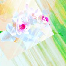 2019 daiyuk_digital artwork_0020.JPG