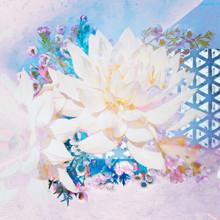 2019 daiyuk_digital artwork_0017.JPG