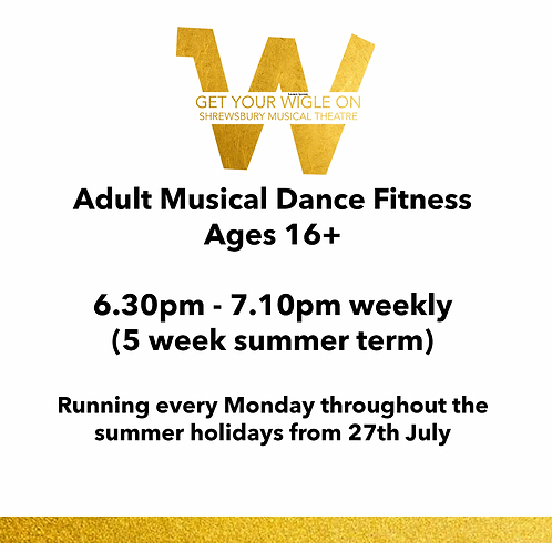 Adult Musical Dance Fitness