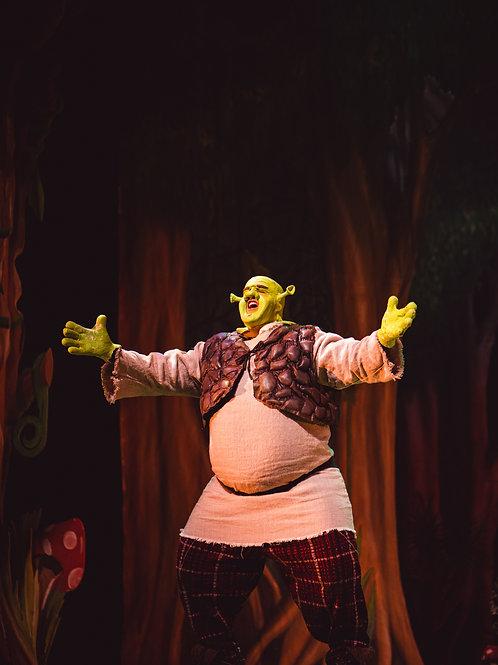 Shrek Dress Rehearsal Pictures
