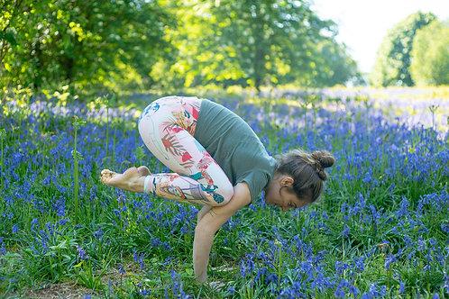 8.00pm Adult Yoga (Thursday 24th June)