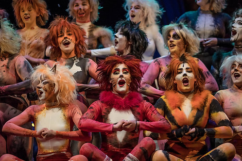 Cats Dress Rehearsal Pictures