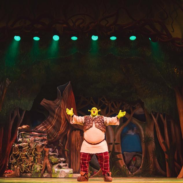 Shrek -4.jpg