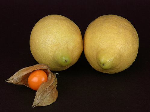 Lemon and Physalis