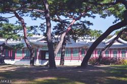 Pavilion of Lanterns