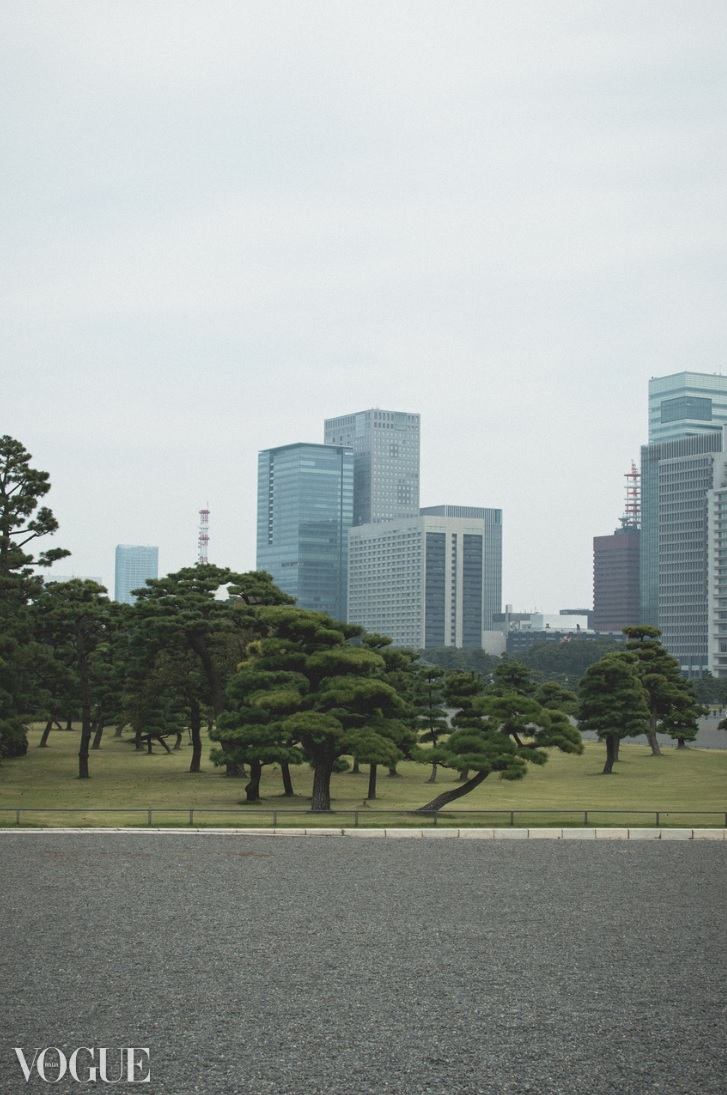 Tokyo tranquility