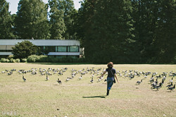 Goose Girl- Summer in Finland